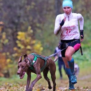 Чемпионат Московской области 15 октября 2017 Головино